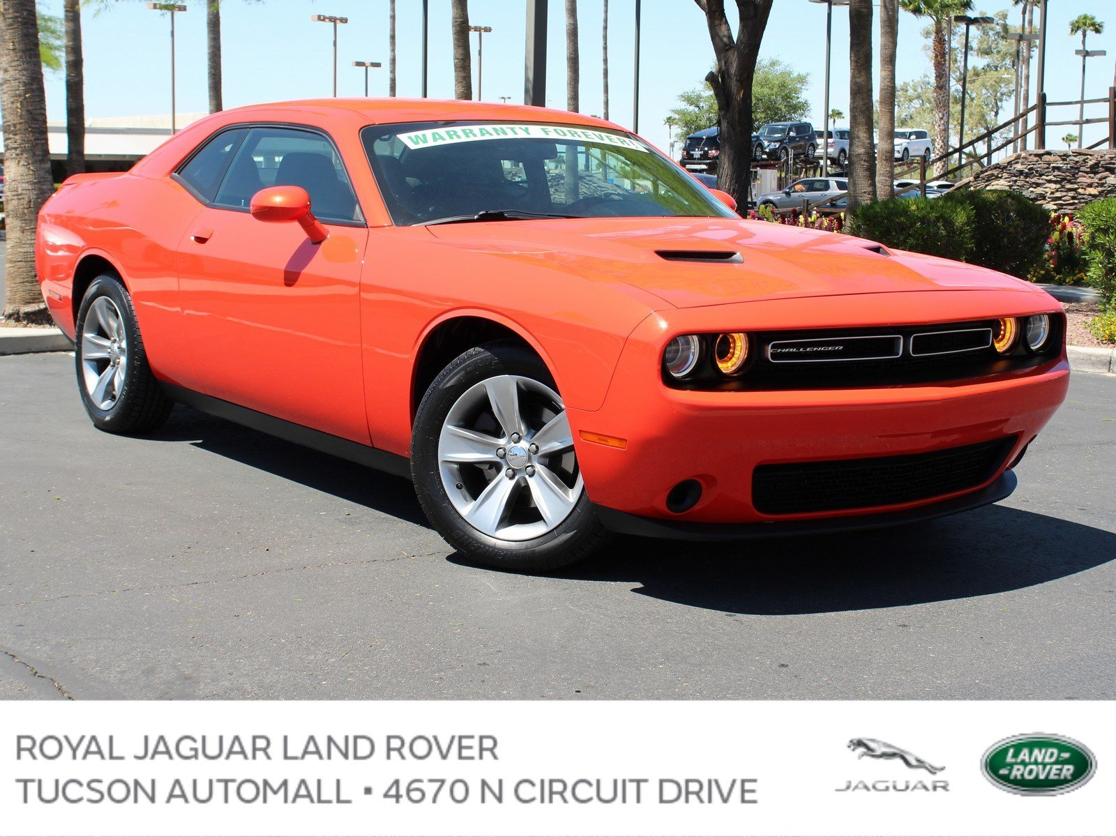 2018 Dodge Challenger >> Pre Owned 2018 Dodge Challenger Rwd Sxt In Tucson Pd29503 Mini Of